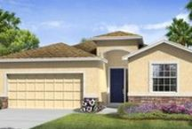 Avalon Park West Brand New Single Family Homes Wesley Chapel Florida /  Avalon Park West is a master-planned community that offers a live, work, play environment built on the charm and convenience of small-town living.