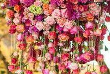 Floral Design @>---