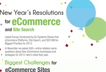 Ecommerce Infographics / Ecommerce infographics and data visualizations for businesses.