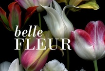 Belle Fleur / Nine West is all about Flower Power! Have a spring fling with beautiful floral prints, from head to toe!