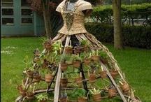 Gardening Inspirations