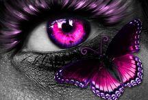 i's / Eyes