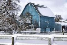 Christmas ~ Winter ~ Blue  / by Susan Bambino