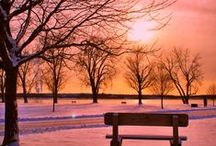 Christmas ~ Winter ~ Pink / by Susan Bambino