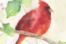 Birds ~ Art / by Susan Bambino