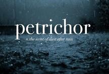 petrichor / by Grace Cason