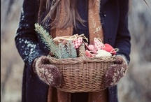 wintertime  / by Jenna Sachs