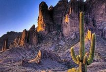 Arizona / by Peggy Elias - Realtor HomeSmart Arrowhead
