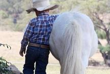 Horses / by Marie Solomon