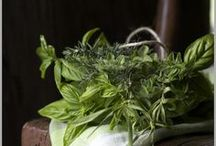 Herbs  :: Spices