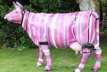 Animaux en résine / Des animaux grandeur nature colorés pour donner une touche originale à votre jardin.