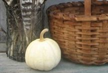 It's Fall y'all / Fall decorating and pictures that inspire