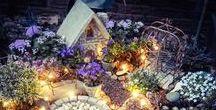 Fairies & Toads / Ideas for creating a magical fairy garden