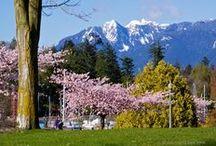 I love Vancouver BC