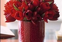 Valentine's Day / by Carolyn Choiniere