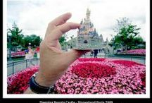 Disneyland - Disney World Vacation