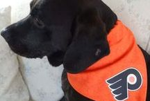 Furry Flyers Fans / by Philadelphia Flyers