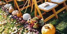 Favorite Fall Wedding Aisles / Fall wedding aisles full of rose petals, pumpkins and sweet decorating ideas!