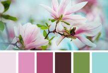 Color my World beautiful / by Henrietta Newman