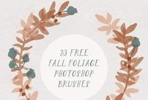 Favorite Freebies / Free downloads, printables, and fonts!