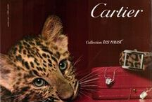 CARTIER / Cartier was founded in Paris in 1847 by Louis-François Cartier when he took over the workshop of his master. In 1874, his son Alfred Cartier took over the company, but it was Alfred's sons Louis, Pierre and Jacques, who were responsible for establishing the brand name worldwide.