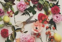 Flowers & Plants & Color / by Ballet Beautiful
