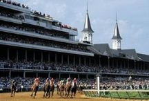 THE Derby...and Other Racing Favorites / by Robyn Henderson