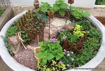 Fairy Gardens / Ideas: layouts, DIY accessories, etc. / by Gloria Erickson