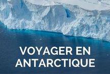Voyager en Antarctique / Un des mes plus beaux voyages aux confins du monde, le septième continent, l'Antarctique, à la rencontre des manchots, phoques, baleines et de paysages hors du commun. Préparez-vous à être subjugué!  Voyager en Antarctique: récits, inspiration et conseils pratiques.