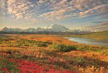Voyager en Alaska / A la découverte de l'Alaska, un de mes grands rêves de voyage. Inspiration et conseils pratiques pour voyager en Alaska.