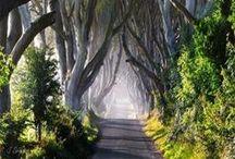 Chemins d'Irlande / A la découverte de l'Irlande, de ses routes, de ses cultures et de ses paysages. Voyager en Irlande: récits, photos, inspiration et conseils pratiques pour préparer votre prochain voyage en Irlande.