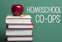 Homeschool: Co-op Ideas / by Lilliput Station