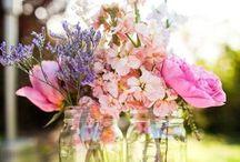 Seasons-Spring / by Annie Horn