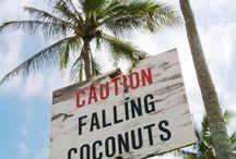 Hawaii / by Annie Horn