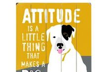 It's All About the Attitude
