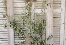 old shutters / by Mari Crea