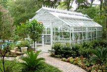 sunroom,conservatory and greenhouse