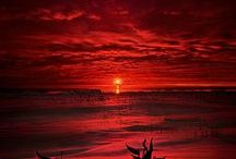 REALLY Red & LeMon YeLLo / by Teresa Wilkes