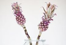 PINEAPPLE MAD / by Ally Tibbles