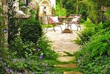 Green / Inspirational gardening and landscaping ideas.