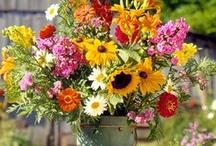 Beautiful Blooms!!!  / Cut flowers and floral arrangements. / by Live. Laugh. Love. Trust God.
