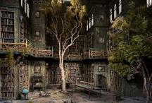 Library / by Sebastien Angel