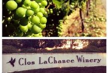 Clos LaChance / Clos LaChance is a family owned and operated winery off the Central Coast of California. As a sustainable vineyard, they decided to produce a line of Vegan wines, creating The Vegan Vine, which is grown and produced at Clos LaChance!