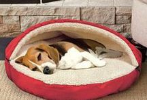 Pet Lovers / All things Cats & Dogs...From cozy pet beds to fun toys for your furry friend to enjoy. We have something special for pet and pet lovers to enjoy!