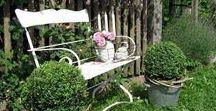 Cottage Garden / Brocante tuin, cottage garden