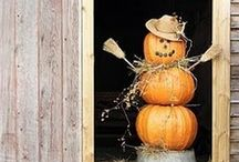 Fall, Halloween & Thanksgiving / by Kendall Shiffler