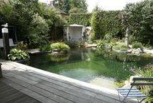 Kijktuinen // Gardens / Neem een kijkje in bijzondere tuinen // sneakpeek in gardens / by Tuinieren.nl