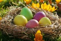 Easter: Real Food Style / Real food ideas for the Easter season / by Katie Kimball (Kitchen Stewardship)