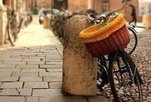 bicycle / lets go for a ride
