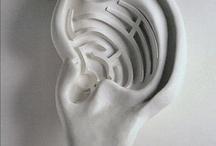 Udito (hearing)